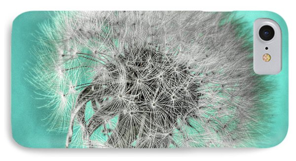 Dandelion In Turquoise IPhone Case by Tamyra Ayles