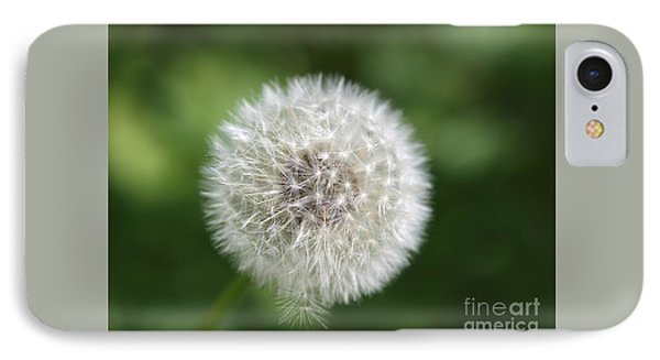 Dandelion - Poof IPhone Case by Susan Dimitrakopoulos