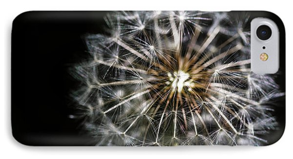 IPhone Case featuring the photograph Dandelion Seed by Darcy Michaelchuk