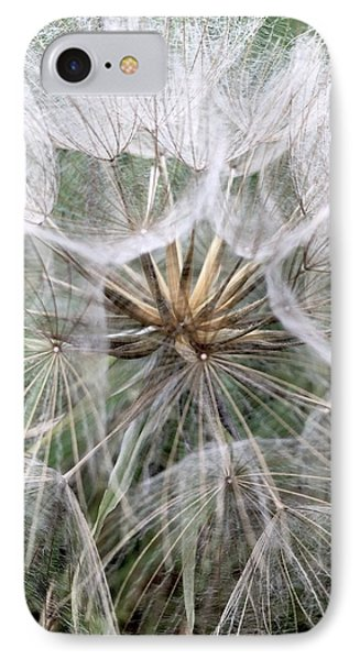 Dandelion Seed Head  IPhone Case by Kathy Spall