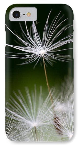 Dandelion Seed IPhone Case by Lise-Lotte Larsson