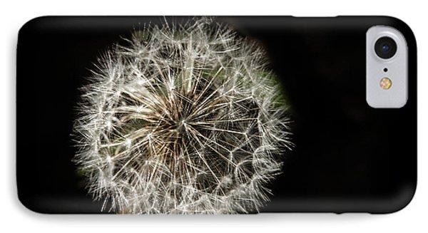 Dandelion Seeds IPhone Case by Robert Bales