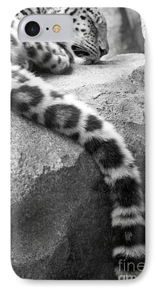 Dangling And Dozing In Black And White IPhone Case by Mary Mikawoz