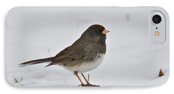 IPhone Case featuring the photograph Dark-eyed Junco 1217 by Michael Peychich