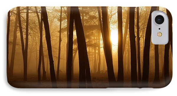 Dark Forest IPhone Case by Terri Gostola