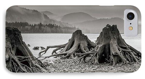 Dark Lake IPhone Case by Marius Sipa