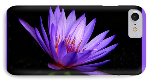 Dark Side Of The Purple Water Lily IPhone Case by Rosalie Scanlon