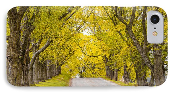 Darling Hill Autumn IPhone Case by Tim Kirchoff