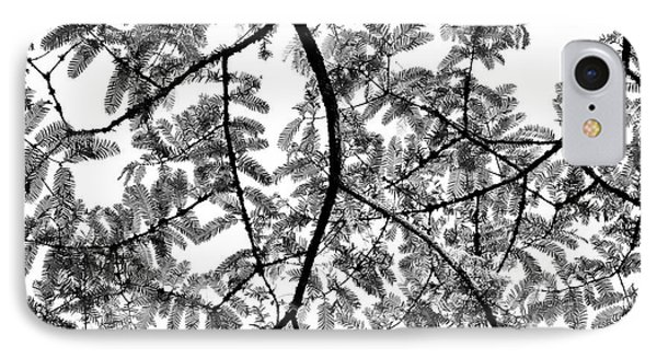 Dawn Redwood Foliage Monochrome IPhone Case by Tim Gainey