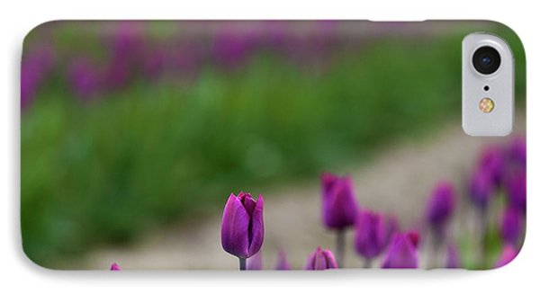 Dawn Tulips IPhone Case by Mike Reid