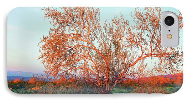 IPhone Case featuring the photograph Dawn's First Light At Joshua Tree National Park by Ram Vasudev