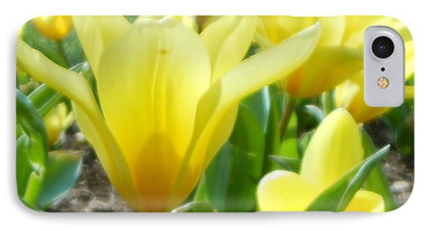 Daydreaming Of Yellow Tulips IPhone Case