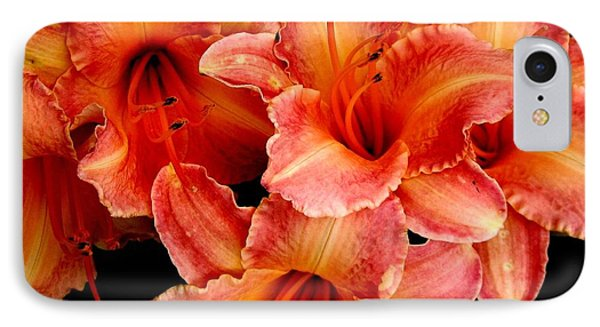 Daylilies 1 IPhone Case by Rose Santuci-Sofranko