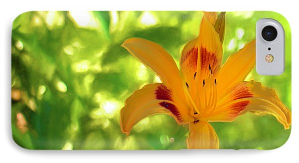 Daylily IPhone Case by Charles Ables