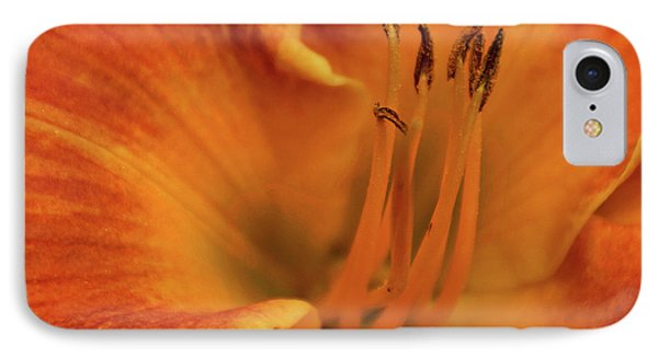 IPhone Case featuring the photograph Daylily Close-up by Sandy Keeton