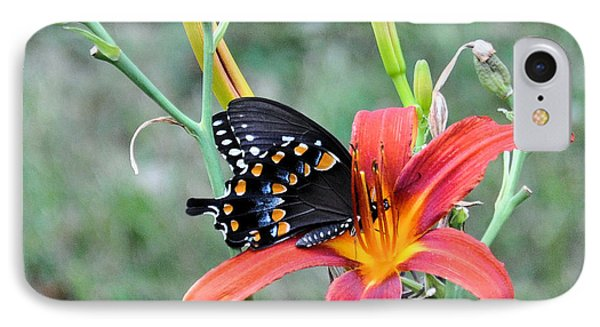 Daylily Delight 2 IPhone Case by Jan Amiss Photography