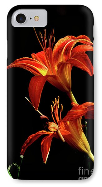 IPhone Case featuring the photograph Daylily Double by Douglas Stucky