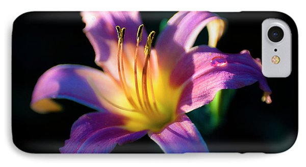 Daylily Glow IPhone Case by Tamyra Ayles