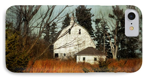 Days Gone By IPhone Case by Julie Hamilton