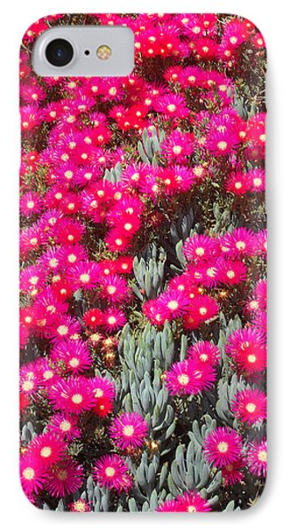 Dazzling Pink Flowers IPhone Case