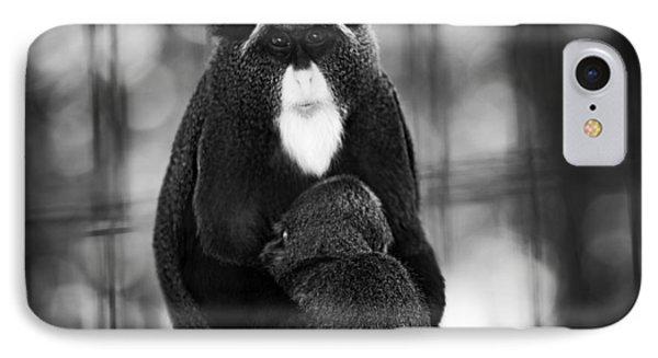De Brazza's Monkey IPhone Case by Jason Moynihan