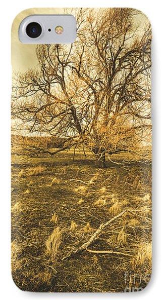 Dead Tree In Seasons Bare IPhone Case