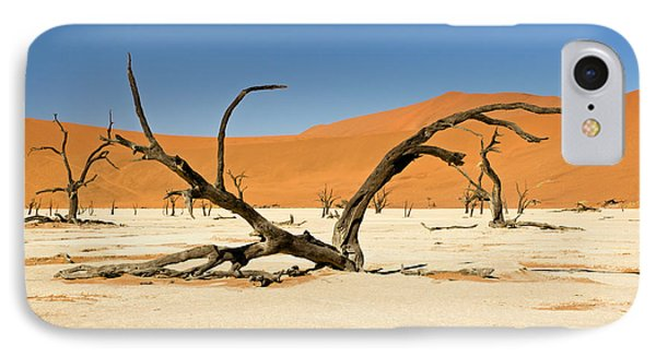 Deadvlei With Tree IPhone Case