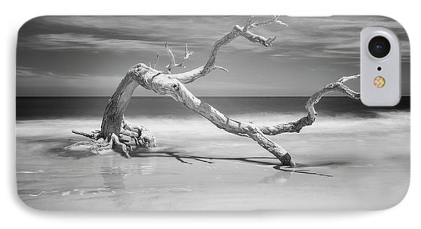 Death Of A Tree IPhone Case by Jon Glaser