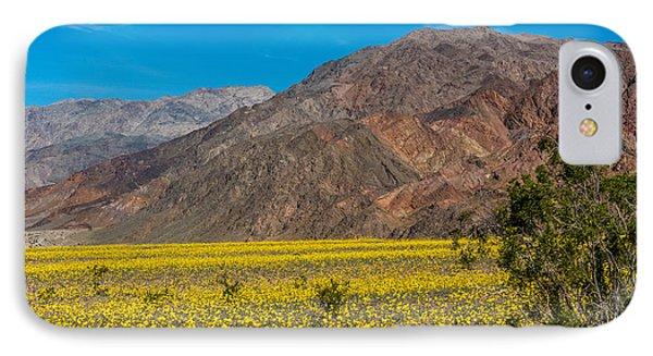 Death Valley Super Bloom IPhone Case by Paul Freidlund