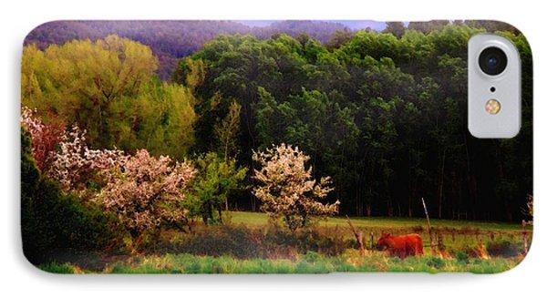 Deep Breath Of Spring El Valle New Mexico IPhone Case