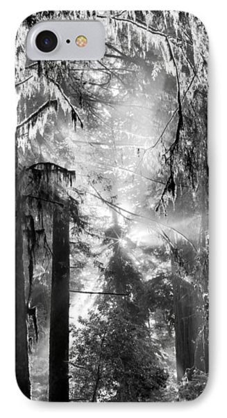 Deep Forest Light IPhone Case by Leland D Howard