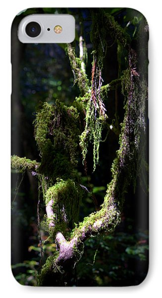 IPhone Case featuring the photograph Deep In The Forest by Lori Seaman