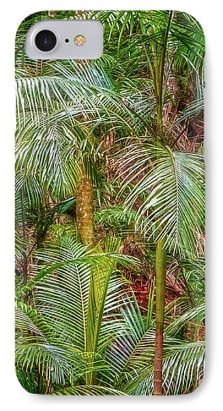 Deep In The Forest, Tamborine Mountain IPhone Case by Dave Catley