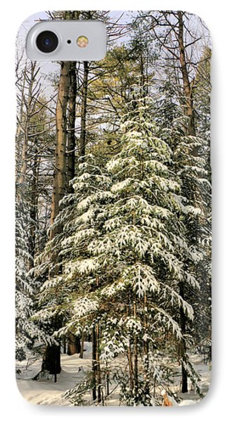 Deep In The Maine Woods IPhone Case by Elizabeth Dow