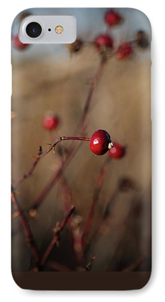 Deep Red Rose Hips On Brown And Blue IPhone Case by Brooke T Ryan