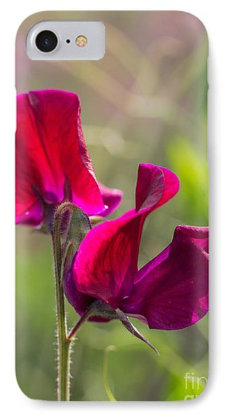 Deep Red Sweet Pea 3292 IPhone Case