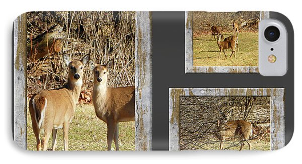 Deer Lovers IPhone Case by Tina M Wenger