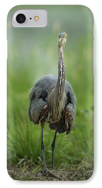 IPhone Case featuring the photograph Defensive Great Blue Heron by Angie Vogel