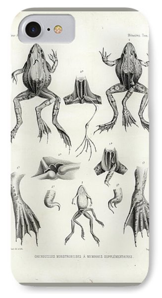 IPhone Case featuring the drawing Deformed Frogs - Historic by Joseph Huet