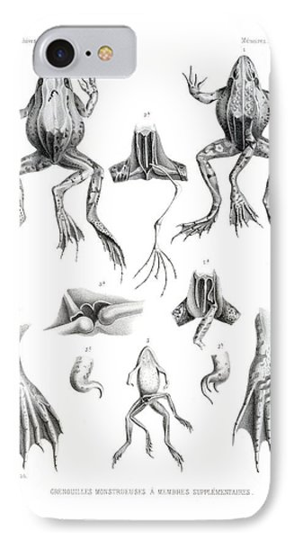 IPhone Case featuring the drawing Deformed Frogs by Joseph Huet