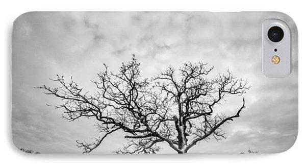 IPhone Case featuring the photograph Delaware Park Winter Oak by Chris Bordeleau