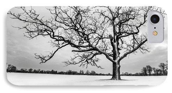 IPhone Case featuring the photograph Delaware Park Winter Oak - Square by Chris Bordeleau