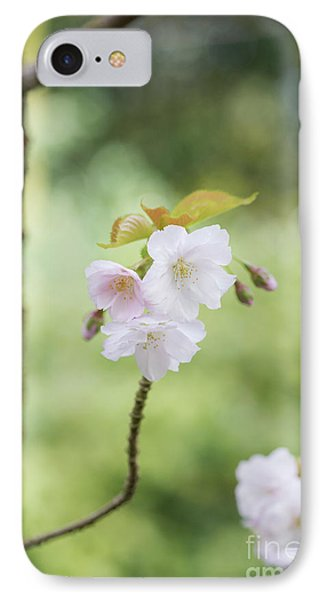 Delicate Blossom IPhone Case by Tim Gainey