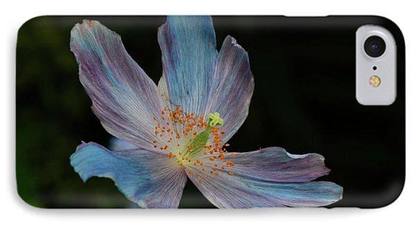 Delicate Blue IPhone Case