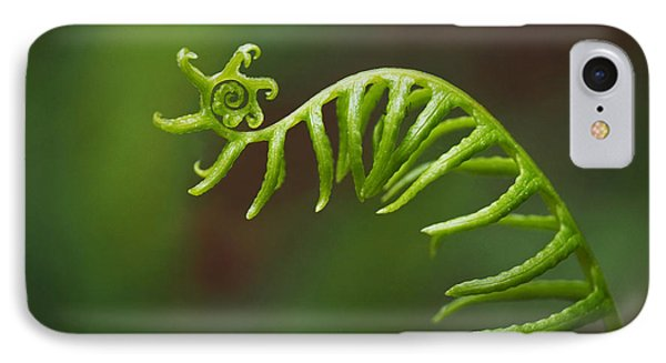 Delicate Fern Frond Spiral IPhone Case by Rona Black