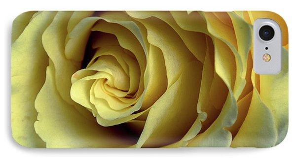 Delicate Rose Petals IPhone Case by Deborah Klubertanz