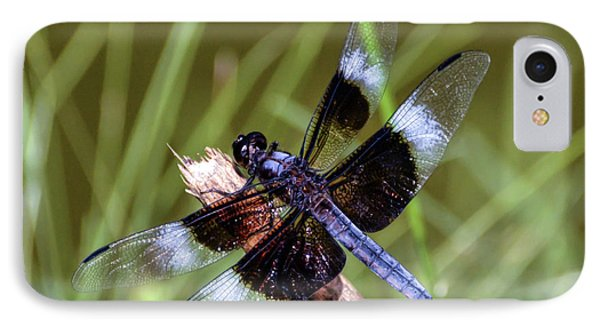 IPhone Case featuring the photograph Delicate Wings Of A Dragonfly by Kerri Farley