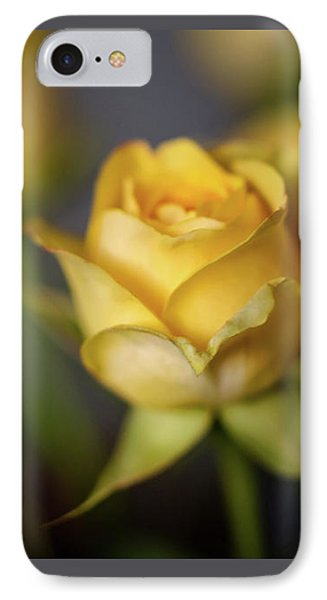 Delicate Yellow Rose  IPhone Case by Terry DeLuco
