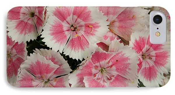 IPhone Case featuring the photograph Delightful Dianthus by Jean Noren