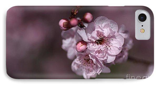 Delightful Pink Prunus Flowers IPhone Case